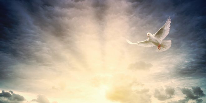 Ascension and Pentecost Sundays ~ submitted by Clifton Flemister, Sr. Warden